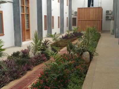 28th February 2016 Dodowa Hospital Internal Courtyard